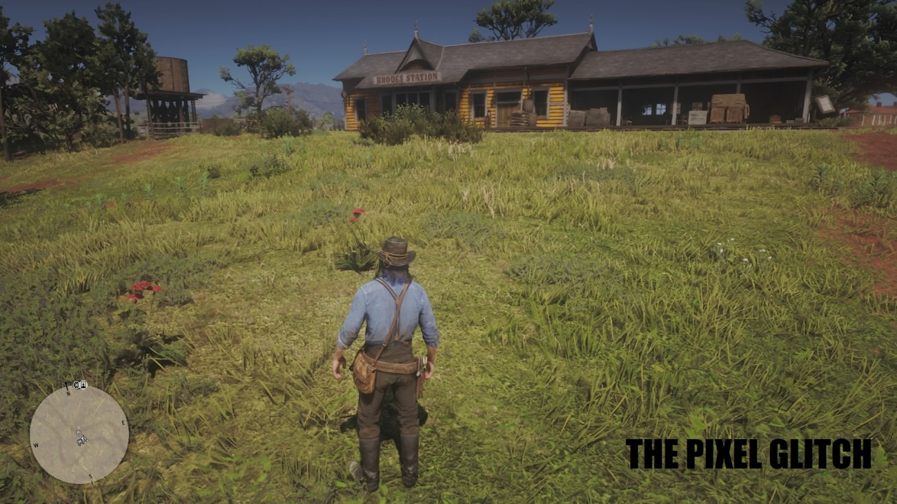 Red Dead Redemption 2_20181125160528